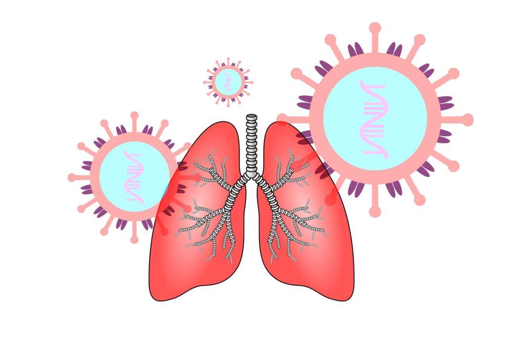 coronavirus lungs