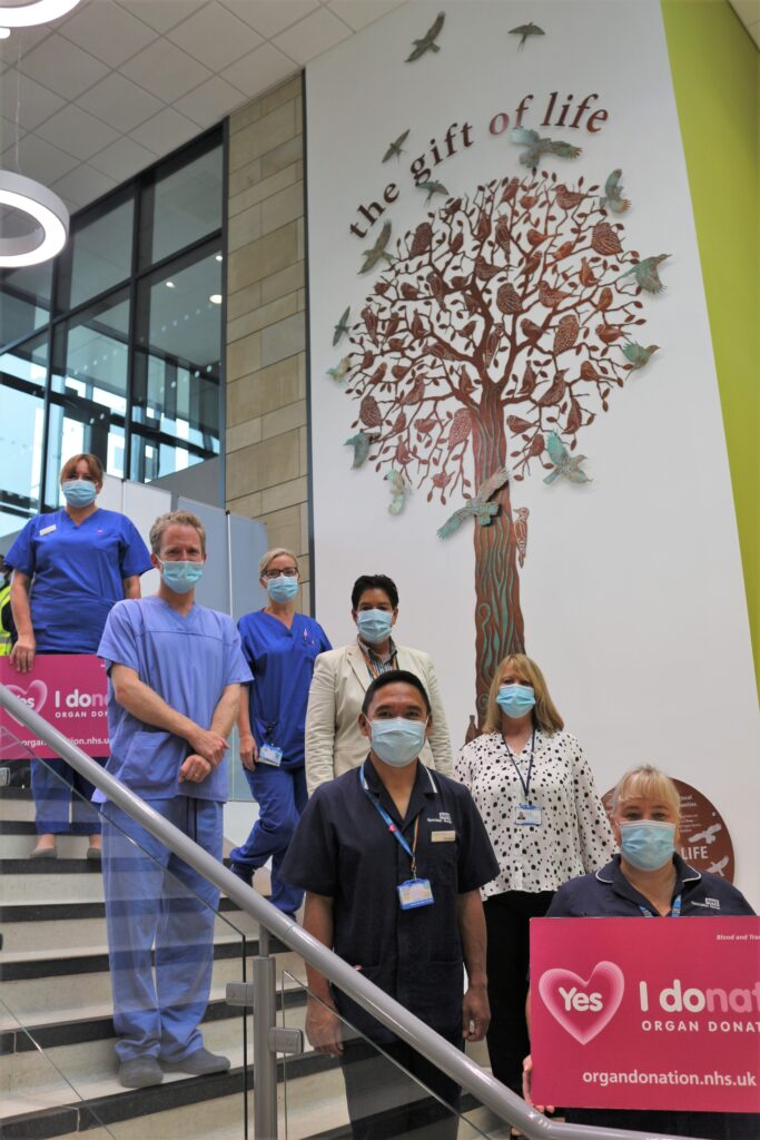 Tree of Life - organ donation memorial
